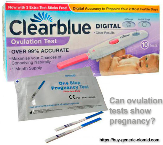 can ovulation tests show pregnancy