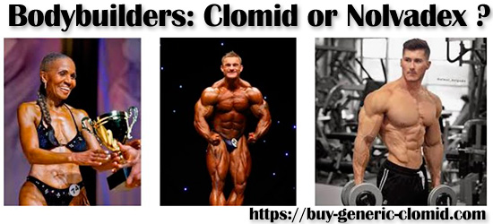 bodybuilders: clomid or nolvadex?