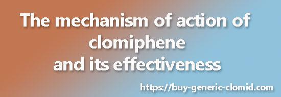 action of clomiphene